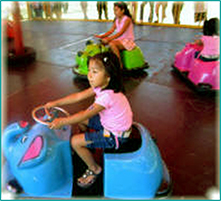 Covered Bumper Cars
