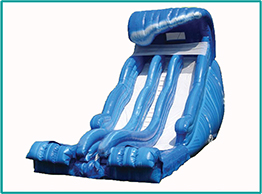 Wild Wave Water Slide