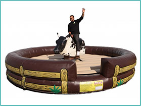 Mechanical-Bull